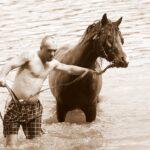 Făt Frumos și calul