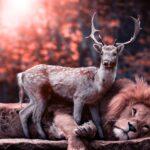 Partida de vânătoare